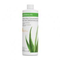 Aloe concentrato alle erbe - Mango 473 ml
